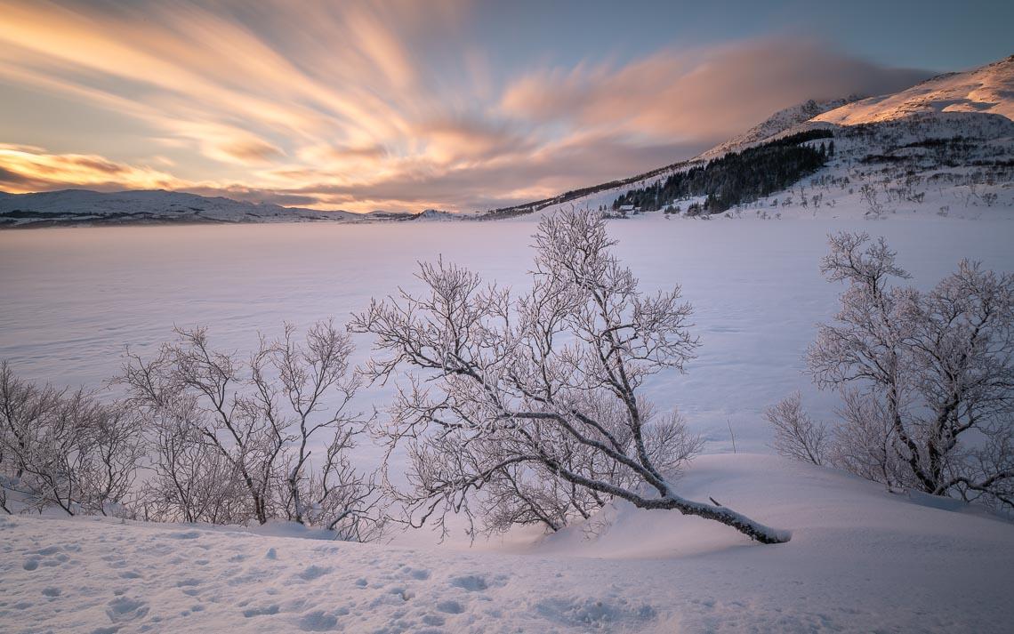 Lofoten Norvegia Nikon School Viaggio Fotografico Workshop Aurora Boreale Paesaggio Viaggi Fotografici 00052