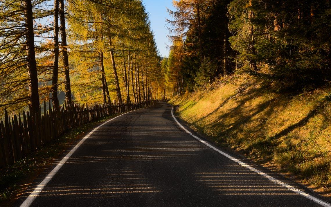dolomiti foliage autunno nikon school workshop paesaggio notturna via lattea startrail 00031