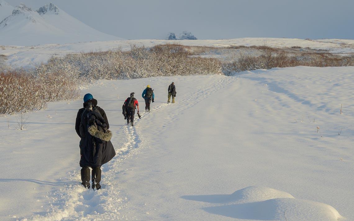 islanda nikon school viaggio fotografico workshop aurora boreale paesaggio viaggi fotografici 00083