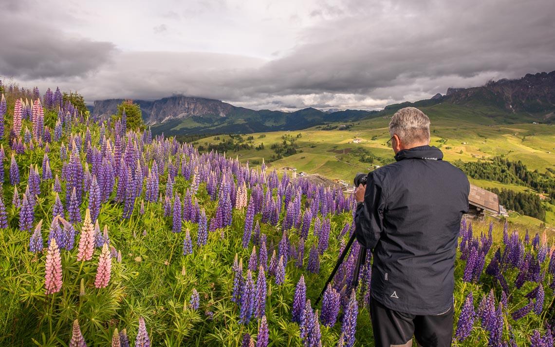 Dolomiti Nikon School Workshop Paesaggio Alpe Siusi Seceda 00008